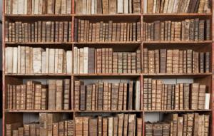 Salvadoriana_biblioteca_JordiVidal