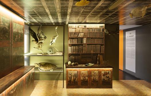 Exposició Gabinet de Curiositats
